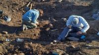 اكتشاف نوع جديد من الديناصورات بعمر 125 مليون عام (صور)